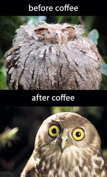 Before coffe - After coffe