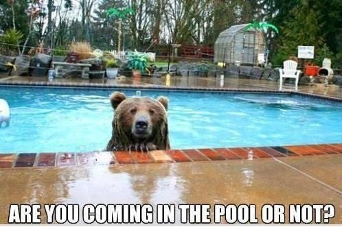 Are you coming in the pool or not ?