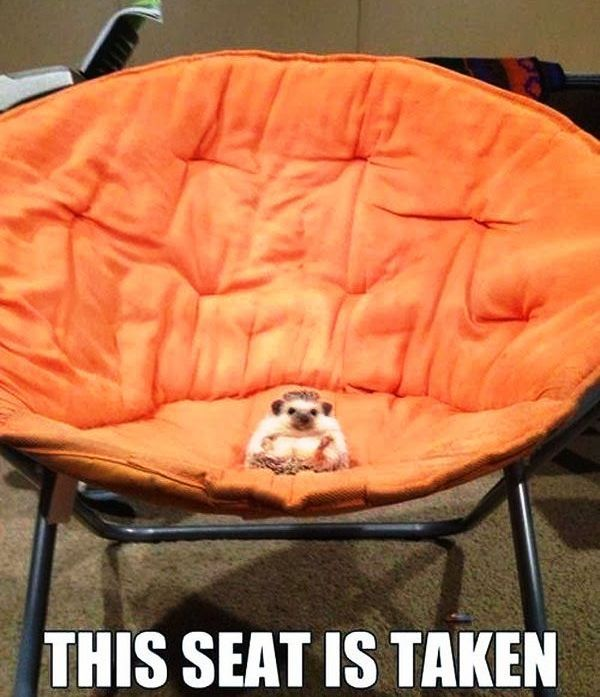 This Seat is Taken