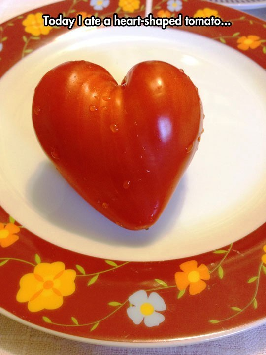 Image may contain: Today i ate a heart-shaped tomato... - Myspace Photo