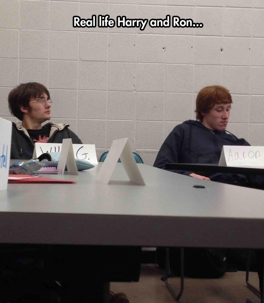 Real life Harry and Ron... - Myspace Photo