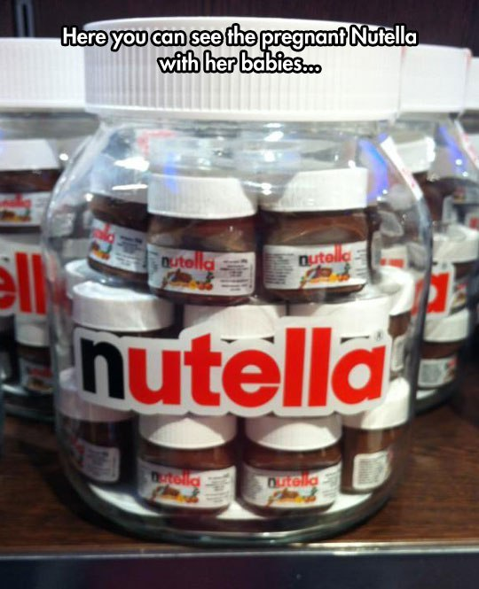 Here you can see the pregnant Nutella with her babies.