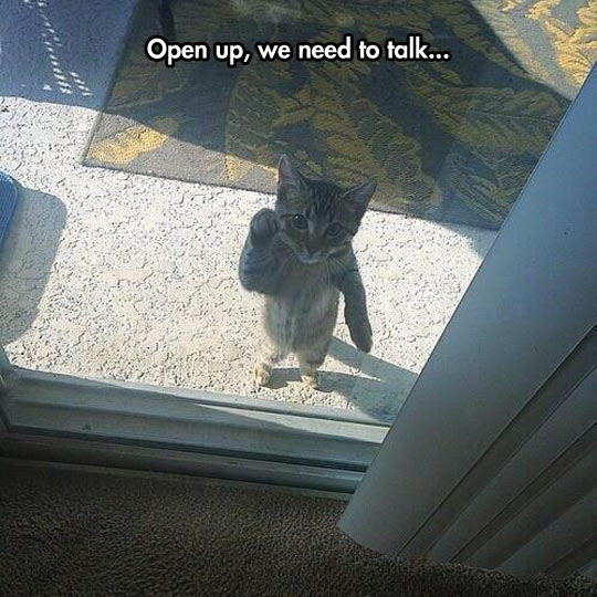 Open up, we need to talk
