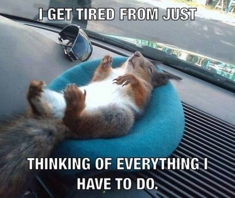 I get tired from just thinking of everything i have to do.
