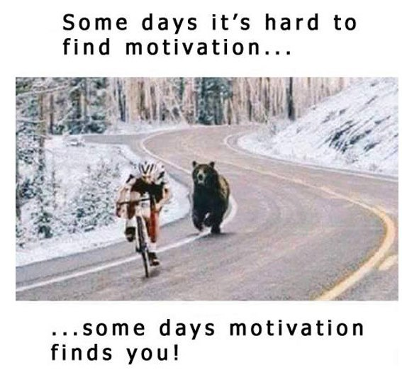 some days it's hard to find motivation... some days motivation finds you!