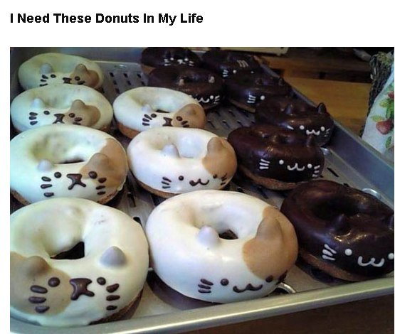 I Need These Donuts In My Life