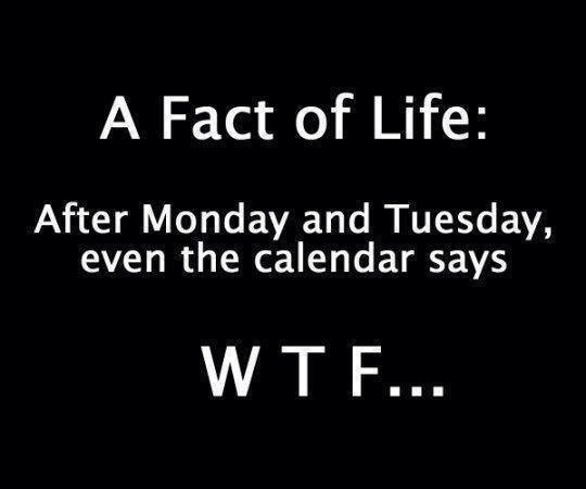 After monday and tuesday the calendar says wtf