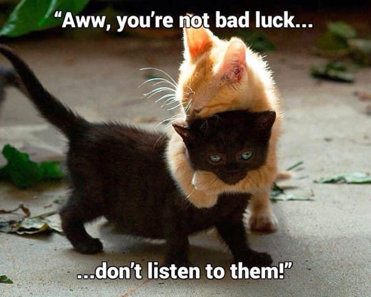 Aww, you're not bad luck..