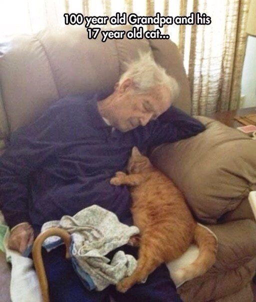 Image may contain: 100 year old Grandpa and his 17 year old cat - Myspace Photo