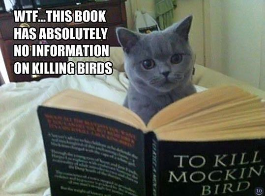 Wtf this book has absolutely no information on killing birds - Myspace Photo