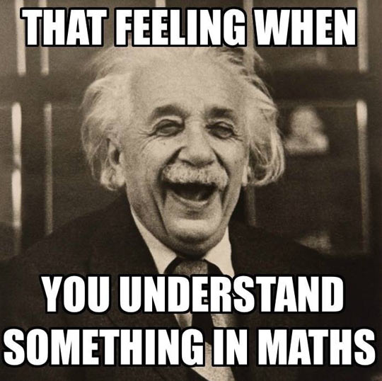 That Feeling When You Understand Something In Math