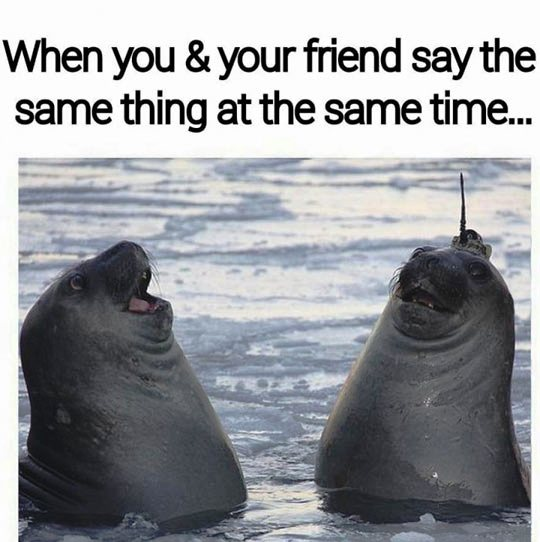 When you and your friend say the same thing at the same time - Myspace Photo