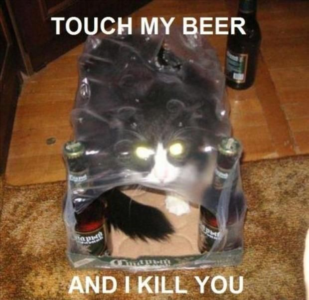 Image may contain: Touch my beer and i kill you - Myspace Photo