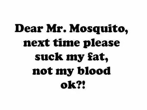 Dear Mr. Mosquito, next time please suck my fat, not my blood ok?