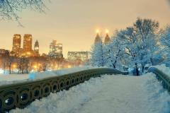 Winter in Central Park, New York City, USA