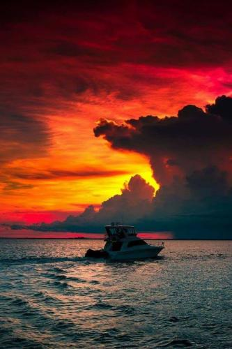Clouds come floating into my life, no longer to carry rain or usher storm, but to add color to my sunset sky