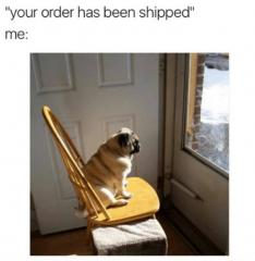 Your order has been shipped